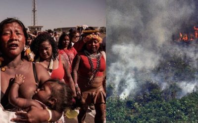The Amazon Burns and the Politics of Death: Resisting the Commodification of Our Future